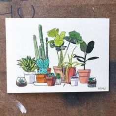 Some little plants 🌱🌵☘️🍃 . . . #art #artwork #plants #artillusion #succulents #botanicalillustration #illustration #pottedplant #watercolor #penandink #ink #pendrawing #usk #urbansketchers