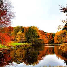 Fall foliage and lake reflection: Photo was taken around Hyde Park, Dutchess County New York.