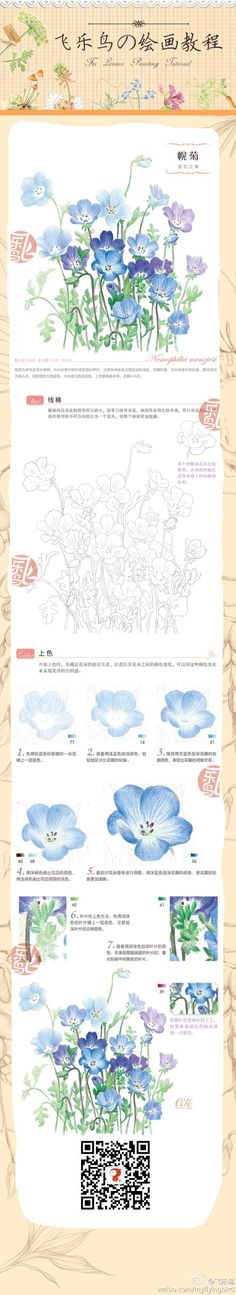 drawing and painting small blue flowers