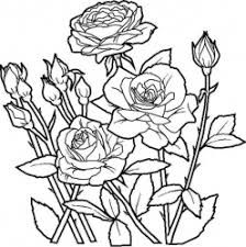 Flowers Coloring pages. Printable Flower Coloring Pages.These printable flower coloring pages are free. Coloring pictures and sheets of f. Flower Coloring Sheets, Rose Coloring Pages, Spring Coloring Pages, Coloring Pages To Print, Free Printable Coloring Pages, Free Coloring, Coloring Pages For Kids, Coloring Books, Online Coloring