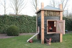 lache, is Van Douglas Chicken Cages, Rabbit Hutches, Chickens Backyard, Backyard Ideas, Garden Ideas, Raising Chickens, Farm Gardens, Outdoor Landscaping, Green Life