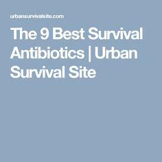 The 9 Best Survival Antibiotics | Urban Survival Site
