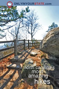 Explore 12 Of The Best Hiking Trails In North Carolina - Hiking North Carolina Vacations, Camping In North Carolina, Asheville North Carolina, North Carolina Mountains, North Carolina Homes, South Carolina, Cary North Carolina, Charlotte North Carolina, Asheville Nc