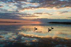 Coorong South Australia
