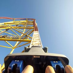 the roller coaster ride: the resignation of a star essay Essay about the art of ride design - the art of ride design with the opening of america's first roller coaster in 1873, a new innovative market was introduced into the american industrial market.