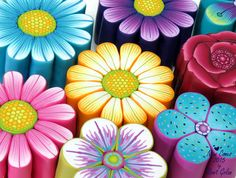 Polymer Clay Flower canes by Ronit Golan