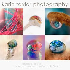 karin taylor photography: The Joy of Experimentation