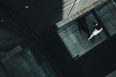 LTSP #43 | Flickr: Intercambio de fotos
