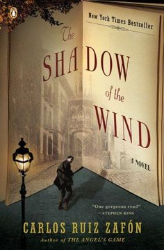 The Shadow of the Wind by Carlos Ruiz Zafón http://www.amazon.com/dp/0143034901/ref=cm_sw_r_pi_dp_xuyVtb18FCJVWGQX