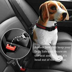 Aodoor Sicherheitsgurt hält deinen Hund sicher auf dem Sitz, auch wenn er aus dem Fenst schauen möchte... Hundegurt Sicherheitsgeschirr Hunde Adapter Autosicherheitsgurt Schwarz 18-27.5in 2 pack: Amazon.de: Haustier