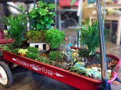 Wagon Fairy Garden!