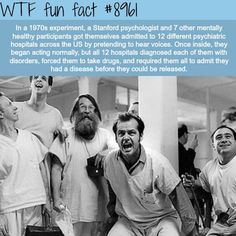 psychology Archives - Page 3 of 42 - WTF Facts Psychology Experiments, Psychology Facts, All Meme, Wow Facts, Funny Facts, Random Facts, Creepy Facts, Random Stuff, Funny Humor