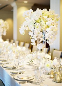 decor, place setting, linen, furniture, centerpieces, table runner, napkin, chairs, classic, orchid, white, Summer, flowers, reception, wedding, Princeville, Kauai