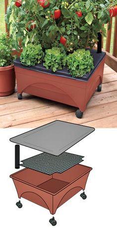 Patio Garden on Wheels, Self Watering Garden, Rolling Garden | Solutions