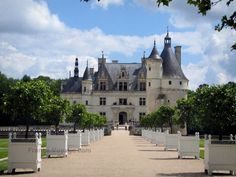 Château de Chenonceau: Path lined with orange trees in jars leading to the Marques tower and to the Renaissance château, clouds in the blue sky - France-Voyage.com