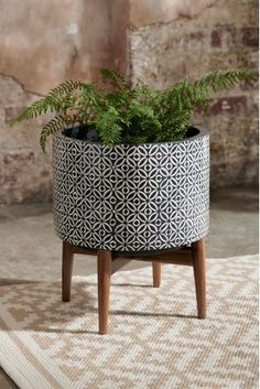 Next geometric plant stand - black scandi в 2019 г. buy plants, plants и ga Buy Plants, Potted Plants, Garden Planters, Planter Pots, Indoor Planters, Wooden Ladder, Garden Furniture Sets, Metal Lanterns, Glass Terrarium