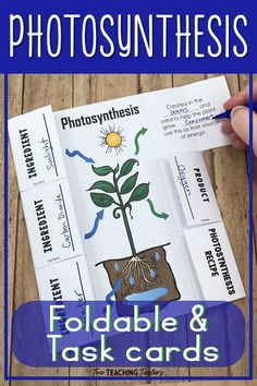 Earth photosynthesis foldable, photosynthesis and cellular respiration projects, photosynthesis high school, photosynthesis comic Science Resources, Science Experiments Kids, Science Lessons, Science For Kids, Science Activities, Science Projects, Life Science, Elementary Science, Middle School Science