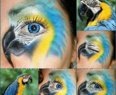 Parrot-eye face paint design.  Perfect for RIO 2 outdoor movie event.