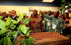 Ghana's National Day at Expo Milano 2015. Showing the world the country's model of growth and democracy | Expo Milano 2015