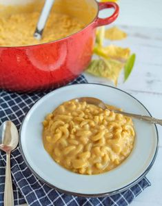 Quick and easy pumpkin macaroni and cheese is such a delicious classic meal with a fun (and easy to hide) twist to infuse a healthy veggie into this forever favorite family dish! #macandcheese #pumpkinmacandcheese #pumpkinrecipes #macaroniandcheese #pasta #pumpkinpasta Pumpkin Mac And Cheese, Pumpkin Pasta, Macaroni And Cheese, Clean Eating Meal Plan, Clean Eating Recipes, Healthy Recipes, Making Mac And Cheese, Thing 1, Food Dishes