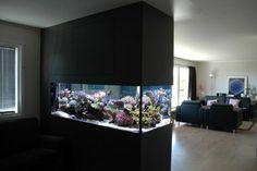 Interior with aquarium