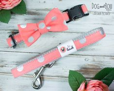 Coral & Silver Polka Dots Dog Collar With Removable Bow Tie or Felt Flower