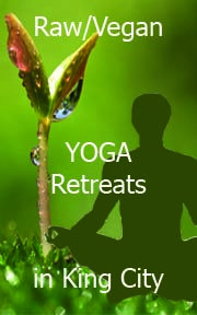 Hidden forest studio Yoga Festival, King City, Yoga Retreat, Raw Vegan, Festivals, Studio, Holiday Decor, Studios, Concerts