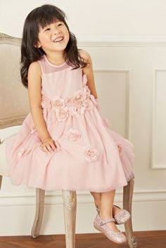 Buy Pink Corsage Dress (3mths-6yrs) from the Next UK online shop