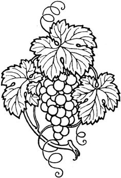 343 Best Stained Glass Grapes, Grapevines, and Wine images