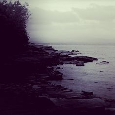 What is known is the wild. This valley, the way she keeps me, calls me to her shores with whispers of westward winds. Vacated beaches and clouds thick like milkweed, like a soft crown around my hea...
