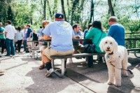 These pet-friendly breweries in Georgia are the perfect adventure for you and your four-legged travel buddy! Japanese Street Food, Four Legged, Brewery, Your Dog, Georgia, Pup, Bring It On, Dogs, Vacation
