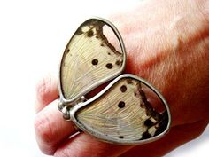 Real Butterfly Wing Ring Made to Order by JennKoDesign on Etsy