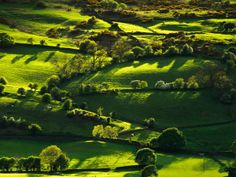 Lyth Valley, Lake District, Cumbria, England.