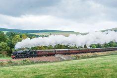 A steam train puffs throught the lush countryide. West Coast Scotland, England And Scotland, Train Travel, Lush, Journey, Tours, Image, West Coast Of Scotland