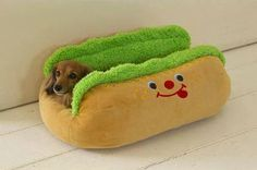 Doxie Bed! ;).  Found it, loved it, bought it!  :)