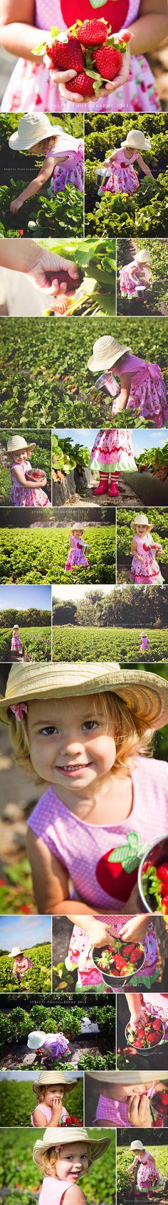 Strawberry Photo Shoot, Little Girl Picking Strawberries, Strawberry Field, Girl Photo Ideas, Strawberry Shortcake Birthday
