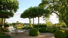Classic contemporary garden design - Marcus Barnett Landscape and Garden Design