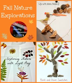 Fall Nature Explorations Featured on The Sunday Showcase at Inspiration Laboratories