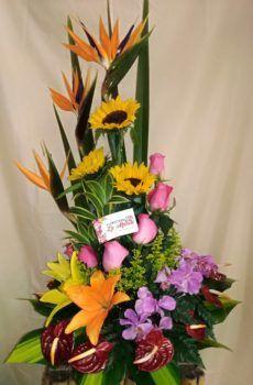 Productos – Floristeria la Maria Floral Arrangements, Bouquet, Tropical, Flowers, Plants, Flower Arrangements, Valentines Day Weddings, Bouquets, Hampers