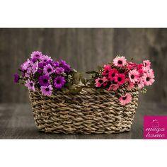 Yapma çiçekler   buketi 55 tl   Sipariş WhatsApp 532 3110491  Bu fotoğrafta solda bir buket sağda bir buket vardır.  #çiçek #megahomedekor #eskişehir #dekor #dekorasyon #evdekorasyonu #dekorasyonfikirleri #tasarım #evim #guzelevim #sunum #sunumönemlidir #hediye #ilginçhediyeler #hediyelikeşya #instamutfak #mutfak #kampanya #çeyiz #çeyizhazırlığı #cicibici #esse #pinkmore #madamecoco #englishhome #perabulvari Sipariş için WhatsApp'tan ya da DM'den ulaşabilirsiniz. Havale EFT veya kapıda ödeme…