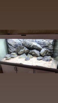 Aquarium Backgrounds, Custom Made, Bed, Furniture, Home Decor, Decoration Home, Stream Bed, Room Decor, Home Furnishings