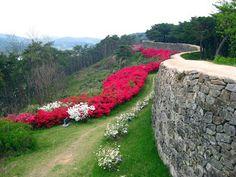 Gochang Fortress, South Korea