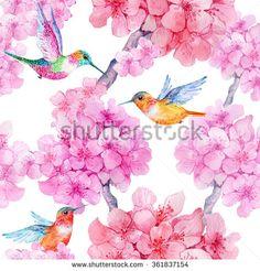 Hummingbird Stock Photos, Images, & Pictures | Shutterstock