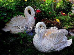 633 Best Elegant Swans Images Swans Swan White Swan