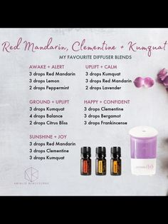 Don't purchase perfume oils believing they are the exact same as vital oils. Although they may smell nice they are not the genuine offer and do not provide therapeutic advantages. Citrus Essential Oil, Essential Oil Diffuser Blends, Doterra Essential Oils, Natural Essential Oils, Doterra Diffuser, Doterra Oils, Doterra Blends, Qi Gong, Diffuser