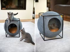 [Trending] Cat Cacoons Designed For Modern Interiors And Made By People With Disabilities