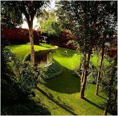The Organic House, Javier Senosiain