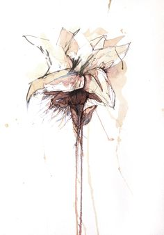 Carne Griffiths; hand-to-flower-1