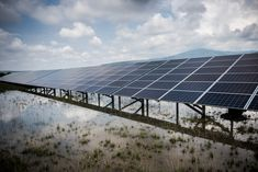 World Energy Hits a Turning Point: Solar That's Cheaper Than Wind Emerging markets are leapfrogging the developed world thanks to cheap panels.