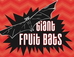 Bizarre Bites: With a 6-foot wing span, the Samoan giant fruit bat, a.k.a. the flying fox, is the most appropriately named animal since the toy poodle. I tried them first on the uninhabited island of Nu'utele in Samoa. They were amazing.
